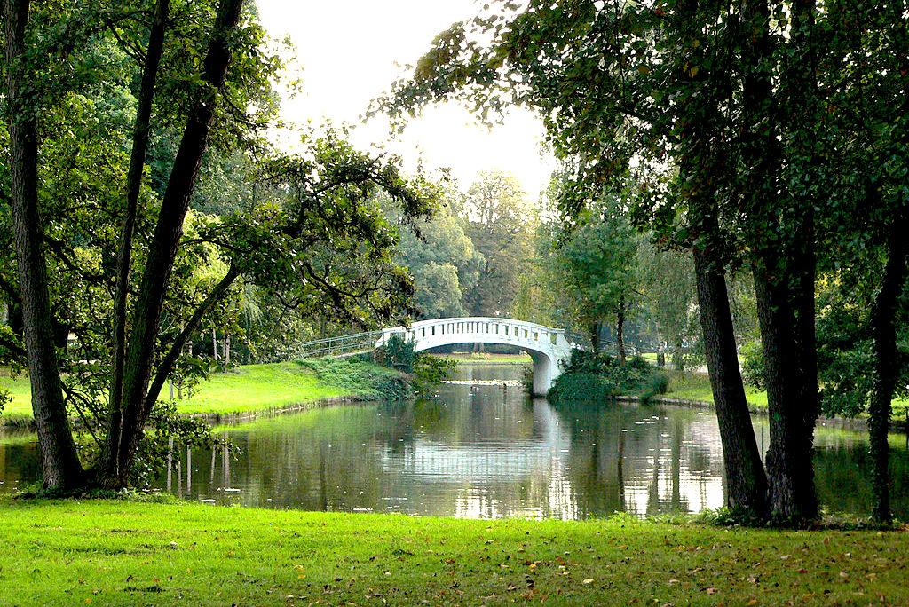 фото Бучанский парк