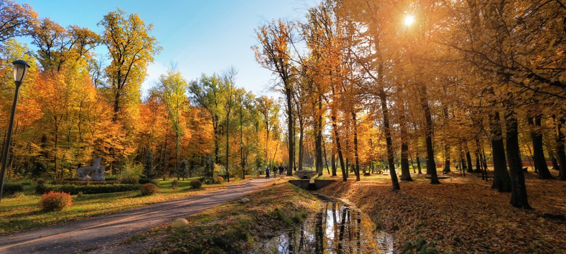 фото Бучанский парк 3