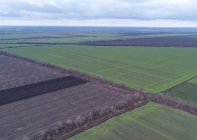 Sale of the agricultural enterprise, Dnipropetrovsk region